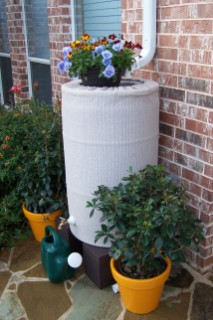 Tan Rain Barrel